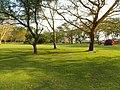 Kenya 2013. At the Lake Naivasha. - panoramio (5).jpg