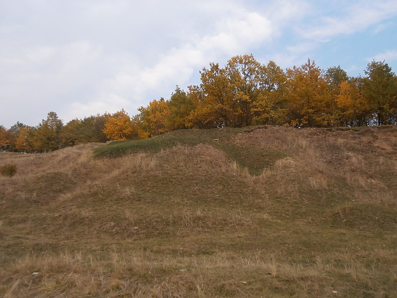 File:Khorol's'kyi district, Poltavs'ka oblast, Ukraine - panoramio (106).jpg