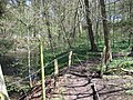 Kissing gate by the River Alyn - geograph.org.uk - 1262747.jpg