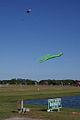 Kite Over Flags 15thAnny FOF 28Nov2010 (14607685726).jpg