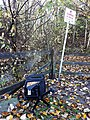 Kiyo Park 181110-024-nds (31090001397).jpg