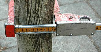 Diameter at breast height - A tree caliper