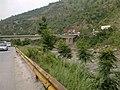 Kohala road - panoramio.jpg
