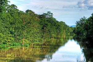 Kolong - A view of river Kolong from Diphalu bridge in Nagaon town of Assam