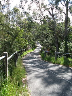 The Koonung Creek Trail west of Blackburn Road.