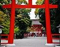 Kyoto Shimogamo-jinja Torii 6.jpg