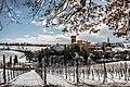 L'inverno fra i filari al Castello di Levizzano.jpg