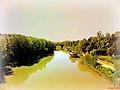 L?oasi da Ponte del Risorgimento.jpg