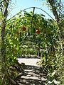 La Bussiere Garden 04.jpg