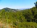 La Molella, prop de Fatxes - panoramio.jpg