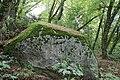 La Pierre aux Dames - panoramio (3).jpg