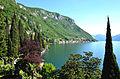 Lago Como 2843.jpg
