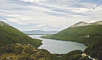 Patagonian grasslands - Lago Escondido, Tierra de Fuego