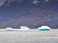 Lago Grey-CTJ-IMG 7166.jpg