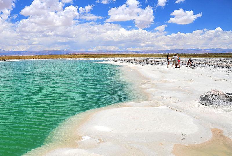 Vale a pena visitar a laguna Cejar no Atacama?