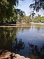Laguna Parque O'Higgins.jpg