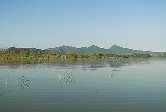 Lake Chamo - Image: Lake Chamo 03