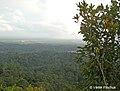 Lambir Hills National Park.jpg