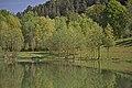 Landschaftsschutzgebiet Gültlinger und Holzbronner Heiden, Kennung 2.35.046, Gültlinger See (Berfeldinger Stauweiher) 02.jpg
