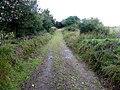 Lane, Drumboory (geograph 3597230).jpg