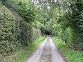 Lane From Cog Hall To Kimbolton - geograph.org.uk - 1460789.jpg