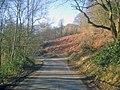 Lane to Hollybush - geograph.org.uk - 1439103.jpg