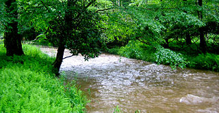 Laurel Fork (North Fork South Branch Potomac River tributary) river in United States of America