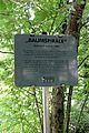 Leube Skulpturenweg - Baumspirale 04.jpg