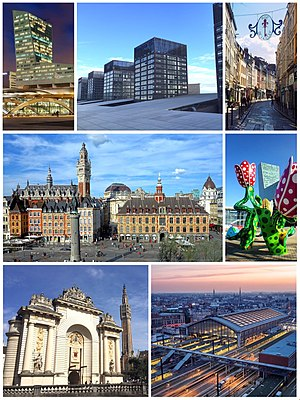 Lille Collage.jpg
