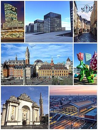 左上:里尔塔(法语:Tour de Lille);正上:Euralille(法语:Euralille)街区的建筑;右上:里尔老城街道;左中:戴高乐将军广场;右中:欧洲文化之都雕塑;左下:巴黎门(法语:Porte de Paris (Lille));右下:里尔佛兰德火车站