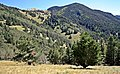 Lincoln National Forest 5.jpg