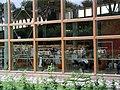 Linkopings stadsbibliotek window.jpg