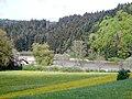 Linsenbergweiher - panoramio.jpg