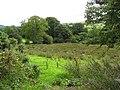Lisdillon Townland - geograph.org.uk - 224856.jpg
