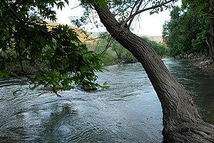 Litani River - Litani River