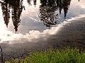 Little Tipsoo Lake (e31df8435a804a8f94518673963faa4a).JPG