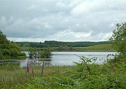 Loch Dornal - geograph.org.uk - 476098.jpg