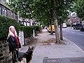 Locke Avenue, Barnsley - geograph.org.uk - 472838.jpg