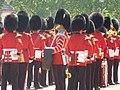 London 2010 (4718347851).jpg