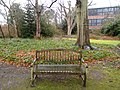 Long shot of the bench (OpenBenches 3882-1).jpg