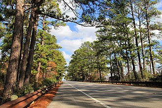 "Texas State Highway 21 - Southbound Highway 21 through the ""Lost Pines"" north of Bastrop."