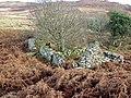 Low Stillaig Second Ruin - geograph.org.uk - 137343.jpg