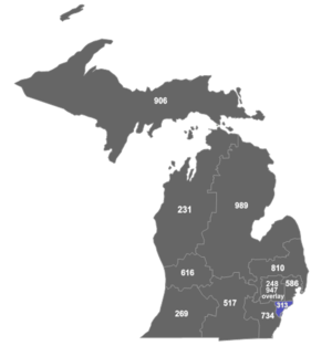 Area code 313 - Map of Michigan area codes.