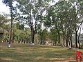 Madhupur.jpg