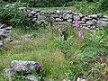 Maes-y-Betws Ruin (detail), Cwm Doethie, Ceredigion - geograph.org.uk - 515630.jpg