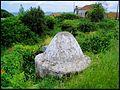 Mafra Poço Saloio (Jerumelo) (518590399).jpg