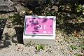 Maison Elsa Triolet Aragon Saint-Arnoult-en-Yvelines 2011 34.jpg