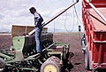 Man filling seeder (27098750069) .jpg