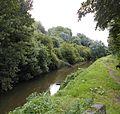 Mandel nabij Emelgem - West-Vlaanderen - België.jpg