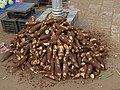 Manihot esculenta - Tapioca - at Kottappuram Market - WikiSangamotsavam 2018, Kottappuram, Kodungalloor.jpg